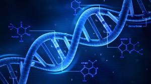 El dna y la epigenética